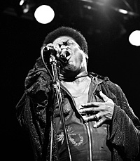 Charles Bradley (c: Luke Hodgkins)